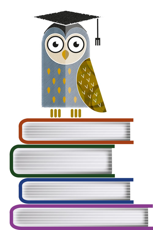 Owl illustration by David Hamburgh